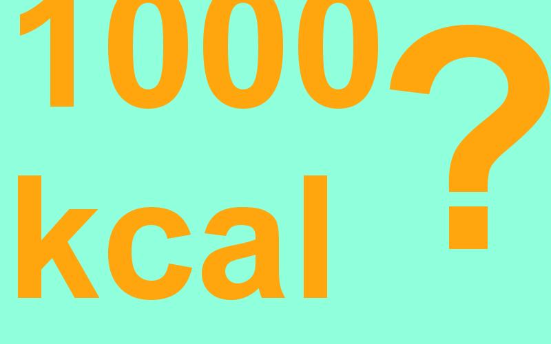 1000 kcal